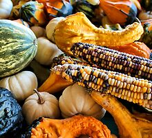 Corn and Gourds by debidabble