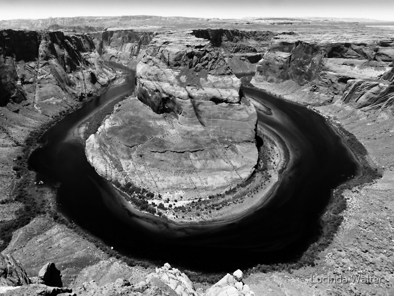 Horseshoe Bend in Black & White by Lucinda Walter