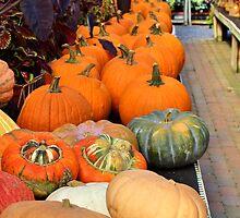 Autumn Bounty by Gilda Axelrod