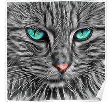 Grey Fur Blue Eyed Cat Drawing Poster