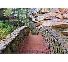 Stone Footbridge at Old Man's Cave Photographic Print