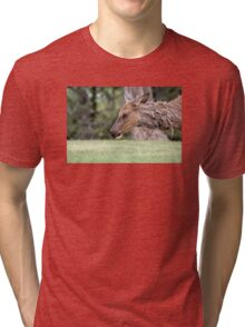 ELK........... (rushed entry ........ stage right) Tri-blend T-Shirt
