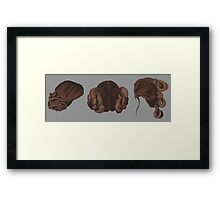 Galatic Heroine Hairstyles Framed Print