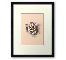 quail eggs nest Framed Print