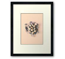 quail eggs nest Framed Print