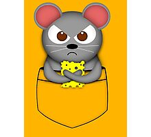 Pocket mouse Photographic Print