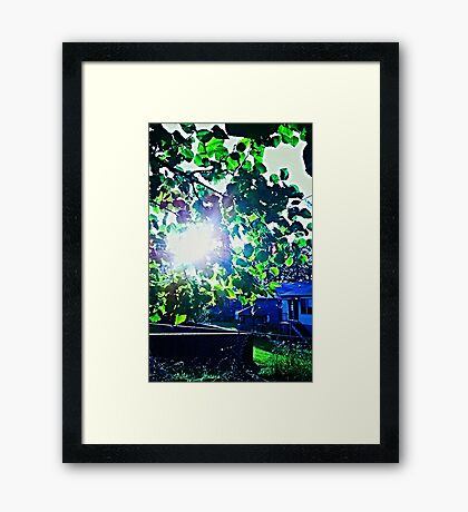Nature in the Suburbs Framed Print