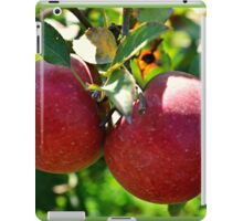 Apples, Apples, Apples iPad Case/Skin