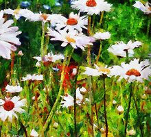 A Dream of Daisies by RC deWinter