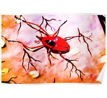 Red insect.  Poster