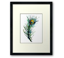 peacock rainbow. Framed Print