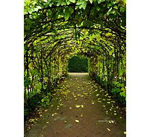 Archway at Buckfast Abbey Photographic Print