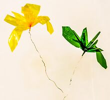Cellophane Flowers of Yellow and Green by BryonyMay