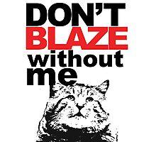 Blaze Cat Photographic Print