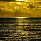 Santa Barbara sunset #1 by David Chesluk