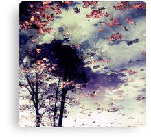 Water and Fall Metal Print
