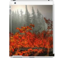 It's All In What You See  iPad Case/Skin