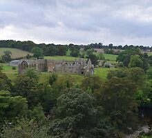 Egglestone Abbey by Richard Winskill