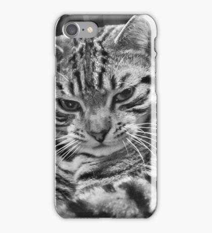 Tabby iPhone Case/Skin