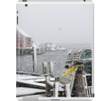Peggy's cove in January iPad Case/Skin