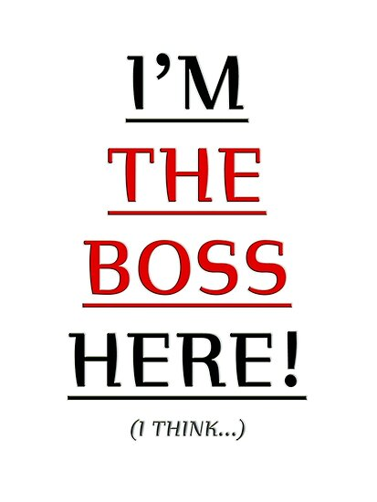 i'm the boss here! by vampvamp