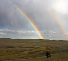 Double rainbow over Trout Creek by pjphoto181