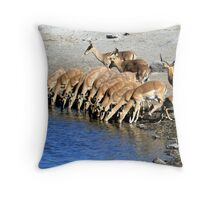 Black-faced Impala Drinking Throw Pillow