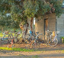 Family Bike Ride..... by mitpjenkeating