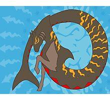 Tiger shark Hippocampus Photographic Print