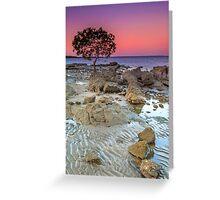 The Little Mangrove Tree - Brisbane Qld Australia Greeting Card
