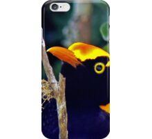 Beauty of the Bower iPhone Case/Skin
