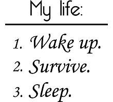 My Life: Wake Up. Survive. Sleep. Photographic Print