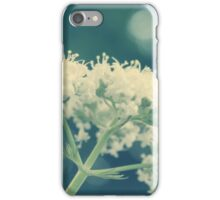 Queen Annes Lace iPhone Case/Skin
