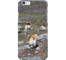 Happy Trails, Corgi Style iPhone Case/Skin