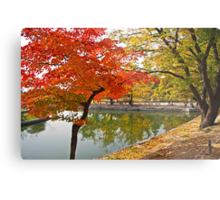 The Autumn Beauty of Hyangwonji Metal Print