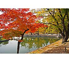 The Autumn Beauty of Hyangwonji Photographic Print