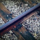 Rail Against Time by Larry Costales