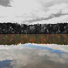 Variations On A Pond - Yates Millpond by mrthink