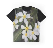 Broome Frangipani Graphic T-Shirt
