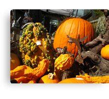 Knobby Pumpkins Canvas Print