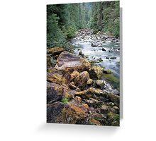 Staircase Rapids, Skokomish River, Olympic National Park, Washington Greeting Card