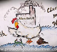 Don't Let Harim Cluck your Health by Preserveprotect