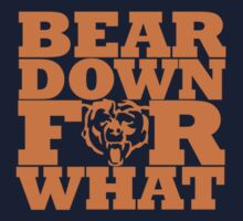 Bear Down For What by Primotees
