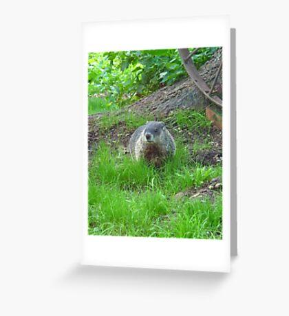 Chuckster Greeting Card