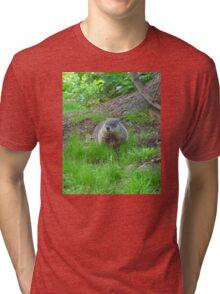 Chuckster Tri-blend T-Shirt