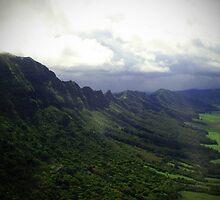 Green Giants Valley - Napali Coast - Kauai  by mAriO vAllejO