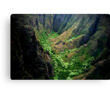 Hidden Valley - Napali Coast - Kauai  Canvas Print