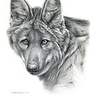Maned Wolf g40 by schukina by schukinart