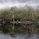 Lake Rosebery at Tullah, Tasmania  by gaylene