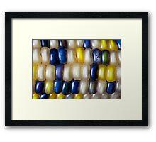 Flint Corn Color Framed Print